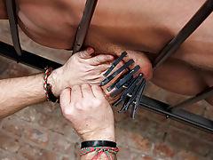 Slave Gay