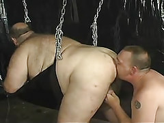 Mature faggot licks extra-weighed studs gazoo