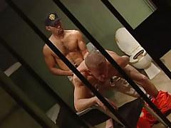Bear guard drills appetizing prisoner