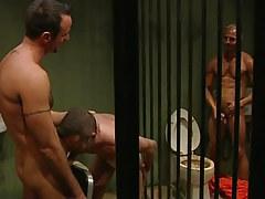 Nasty prisoners greedily engulf snakes