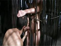 Gay boy sucks poor man in cage