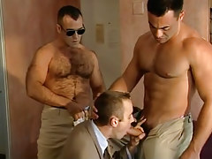 Bear and muscle policemen coax courier
