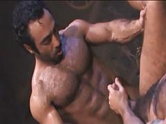 Bear Arabian homo bangs curly dilf in archeological dig