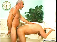Silver bear father makes love boy in doggy style