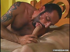 Mature bear gay sucks pecker