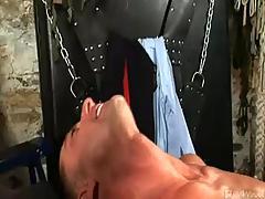 Gay Tube Clips